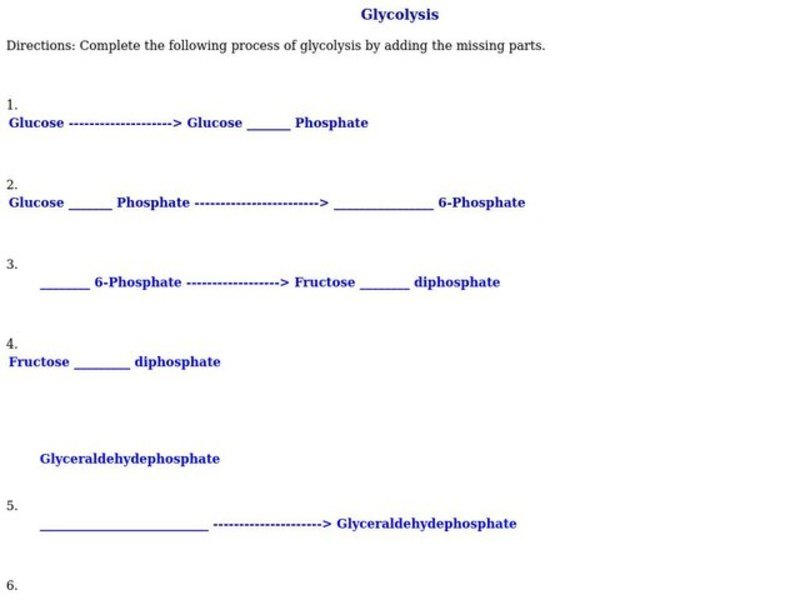 Glycolysis Worksheet For 9th 10th Grade Lesson Planet