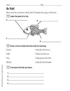 Go Fish! Worksheet