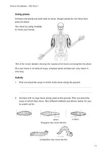 Going Places Worksheet