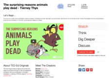 The Surprising Reasons Animals Play Dead Video