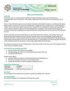 Understanding Viruses Worksheet Answers