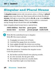 Grammar: Singular and Plural Nouns Worksheet