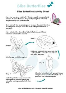 Bliss Butterflies Activity Sheet Worksheet