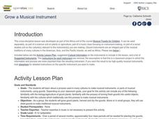 Grow a Musical Instrument Lesson Plan