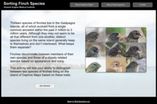 Sorting Finch Species Interactive