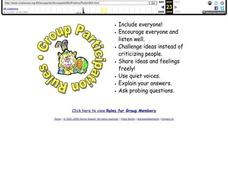 Group Participation Rules Graphic Organizer