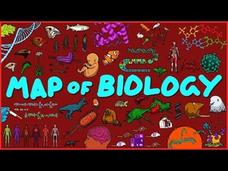 The Map of Biology Video