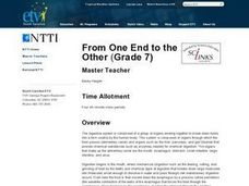 From One End to the Other Lesson Plan