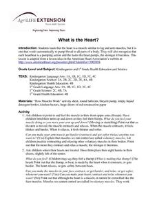 What is the Heart? Lesson Plan