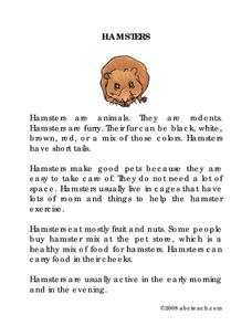 Hamsters Worksheet