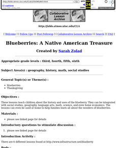 Blueberries: A Native American Treasure Lesson Plan