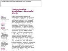 Comprehension: Vocabulary - Wonderful Words Lesson Plan