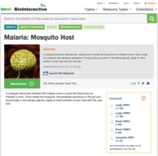 Malaria: Mosquito Host Video
