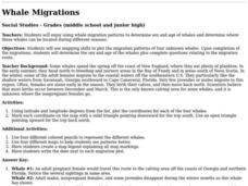 Whale Migrations Lesson Plan