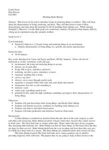 Shrimp Lesson Plans & Worksheets | Lesson Planet
