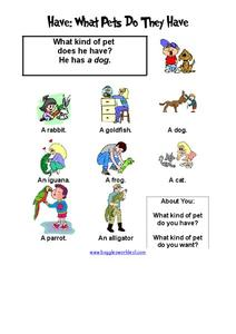 Have: What Pets Do They Have? Worksheet