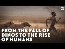 From the Fall of Dinos to the Rise of Humans Video