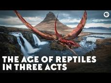 The Age of Reptiles in Three Acts Video