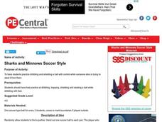 Sharks and Minnows Soccer Style Lesson Plan