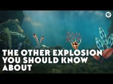 The Other Explosion You Should Know About Video