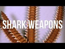 Shark Weapons Video