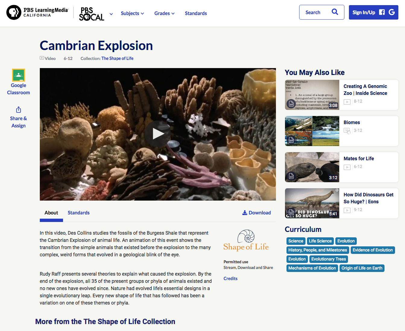 Cambrian Explosion Video
