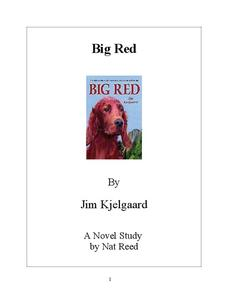 Big Red Novel Study Study Guide