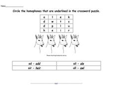 Homophones in a Puzzle Worksheet