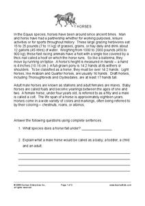 Horses Worksheet
