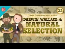 Darwin and Natural Selection: Crash Course History of Science #22 Video