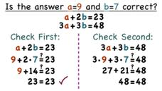 How Do You Check Your Answer When You Have Two Equations? Video