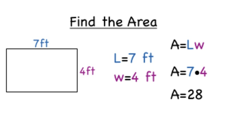 How Do You Find the Area of a Rectangle? Video