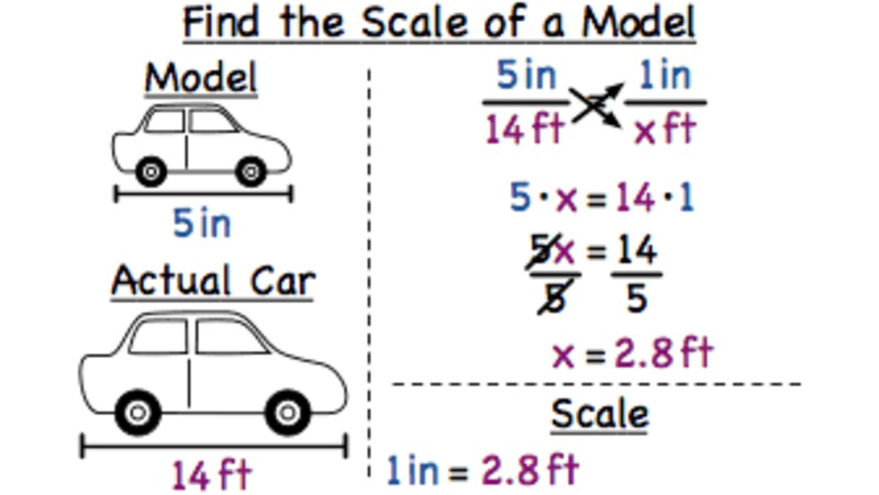 How Do You Find the Scale of a Model? Video
