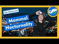Increasing Night Life of Mammals - De-Natured Video
