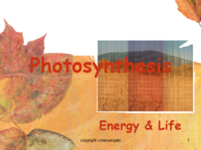 Photosynthesis: Energy and Life Presentation