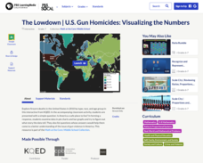 The Lowdown — U.S. Gun Homicides: Visualizing the Numbers Interactive