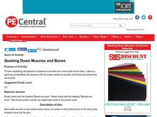 Quieting Down Muscles and Bones Lesson Plan