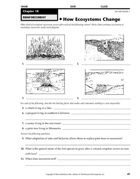 How Ecosystems Change Worksheet For 4th 8th Grade