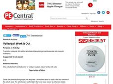 Volleyball Work It Out Lesson Plan