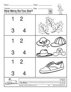 How Many Do You See? Worksheet