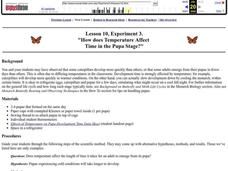 How does Temperature Affect Time in the Pupa Stage? Lesson Plan