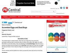 Scrambled Eggs and Dead Bugs Lesson Plan