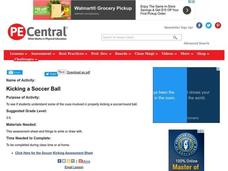 Kicking a Soccer Ball Lesson Plan
