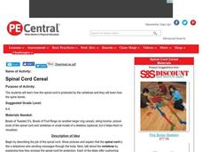 Spinal Cord Cereal Lesson Plan