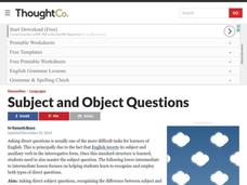 Subject and Object Questions Lesson Plan