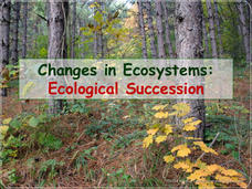 Changes in Ecosystems: Ecological Succession Presentation
