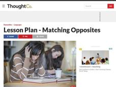 Lesson Plan - ESL Vocabulary Lesson Plan - Opposites for Advanced Level Learners Lesson Plan