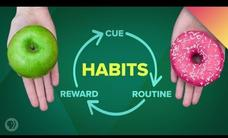 How Habits Change Your Brain Video