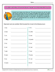 Spelling Rule Exceptions for Plural Nouns: Words That End in X and Z Worksheet