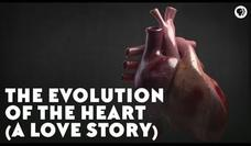 The Evolution of the Heart (A Love Story) Video